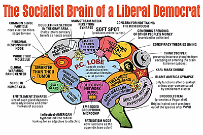Click image for larger version.  Name:The brain of a libtard.png Views:25 Size:889.7 KB ID:82464