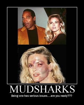 Click image for larger version.  Name:mudshark-issues.jpg Views:3 Size:74.6 KB ID:10719