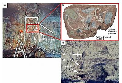 Click image for larger version.  Name:15876412-7233057-a_The_interior_of_Apidima_Cave_with_the_skull_breccia_red_box_be-a-38_156277324.jpg Views:22 Size:123.2 KB ID:213457