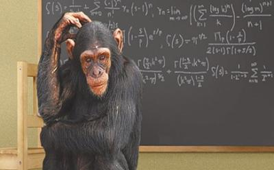 Click image for larger version.  Name:Monkey-Math.jpg Views:0 Size:77.7 KB ID:214441