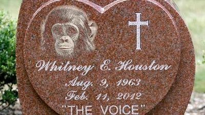 Click image for larger version.  Name:whitney-houston-headstone.jpg Views:0 Size:179.2 KB ID:37739