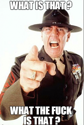 Click image for larger version.  Name:ermey wtf.PNG Views:0 Size:414.7 KB ID:212707