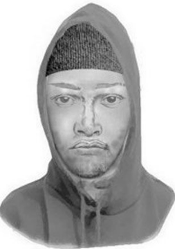 Click image for larger version.  Name:Screenshot_2019-11-09 Montgomery Co police release sketch of suspect in Halloween sex assault WT.png Views:20 Size:86.8 KB ID:216319