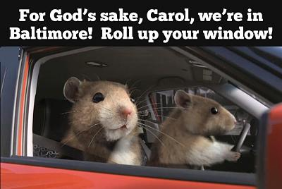 Click image for larger version.  Name:rats.jpg Views:1 Size:92.8 KB ID:214048